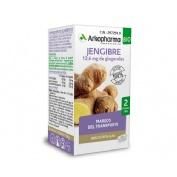 Jengibre arkopharma (365 mg 48 capsulas)