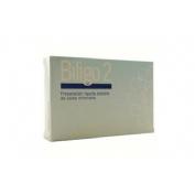 Artesania biligo 2 (cobre)