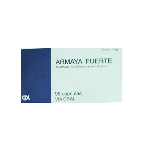 ARMAYA FUERTE 120 mg CAPSULAS DURAS. , 96 cápsulas
